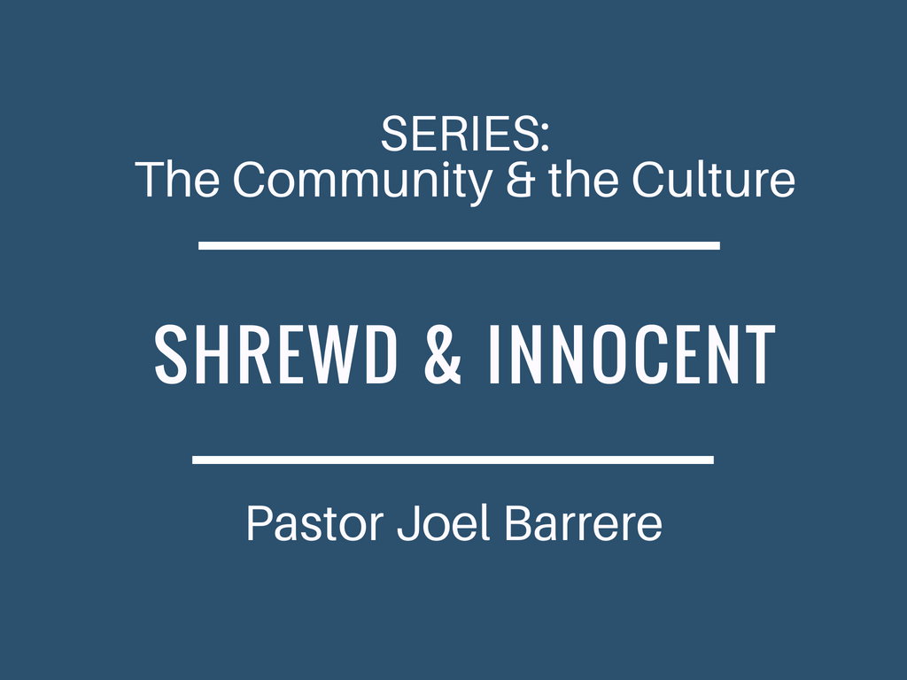The Community and the Culture: Shrewd & Innocent Image