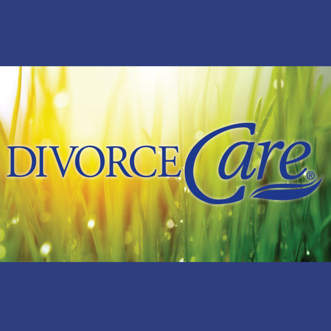 Copy of 300 x 250 px Divorce care