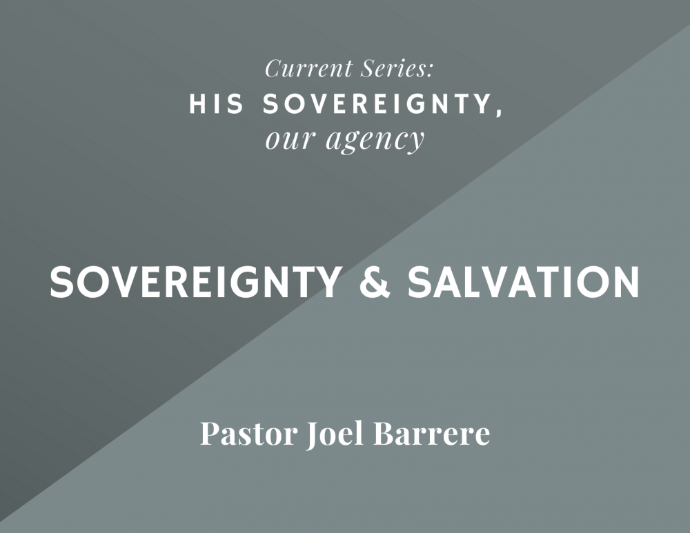 Sovereignty and Salvation Image