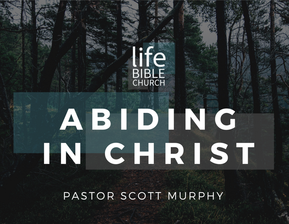 Abiding in Christ Image
